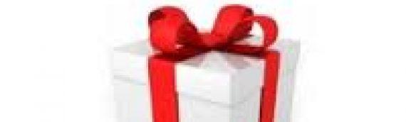Noël 2015, chèque cadeau «la belle verte»