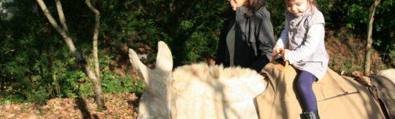 Voyage écologique : une opportunité pour faire un tourisme responsable