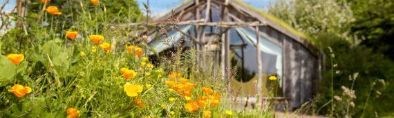 L'Ecolodge La Belle Verte candidate aux palmes du tourisme durable 2017